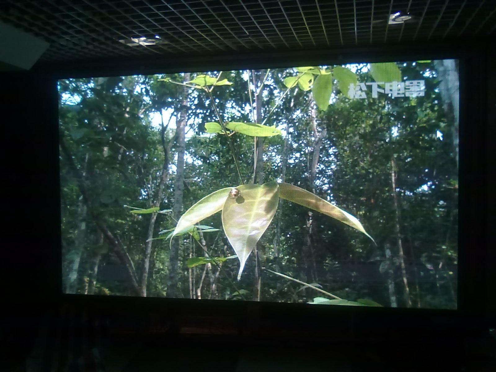 北京紫玉酒店室内P4LED显示屏